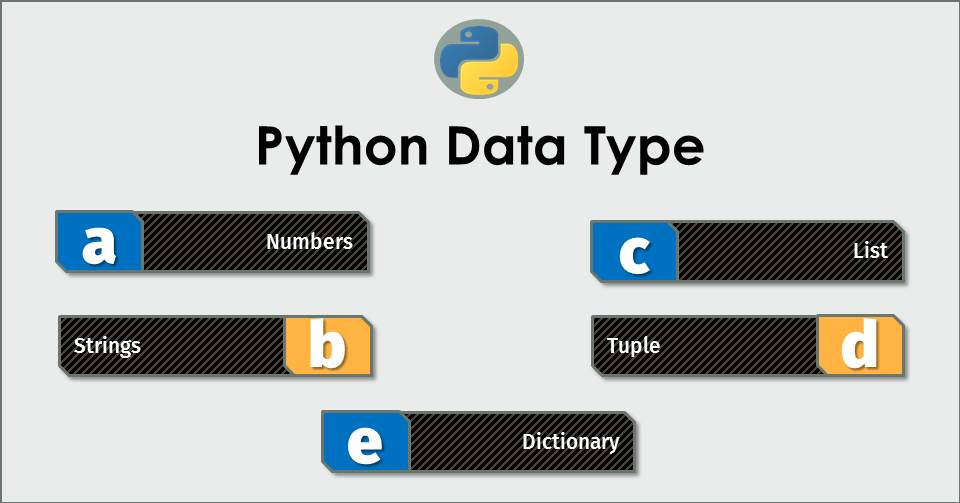 # 5 Data Type in Python Language