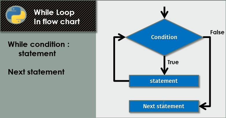 #8 Loop Statement in Python