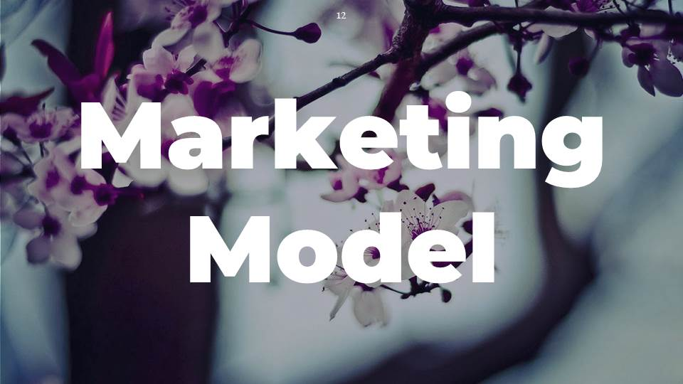 Low Budget on How Marketing Model Help You to Increase your Sales